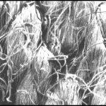 filter cloth-yarn types-Spun